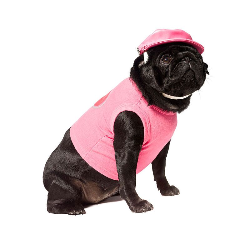 Dog Clothes Pink Dogs Puppy Clothes Dog Shirt