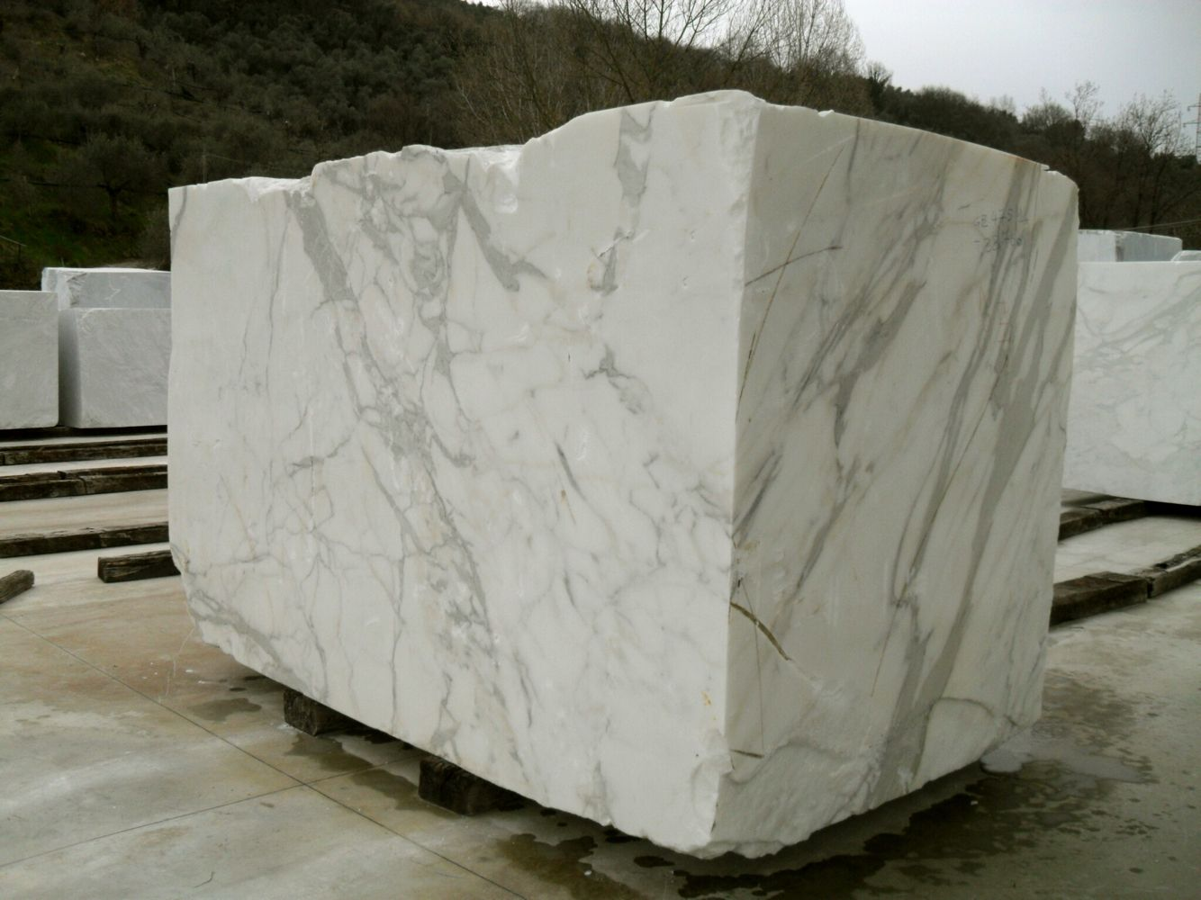 Black Gold Marble Blocks : Calacatta marble block in italy the story of tile