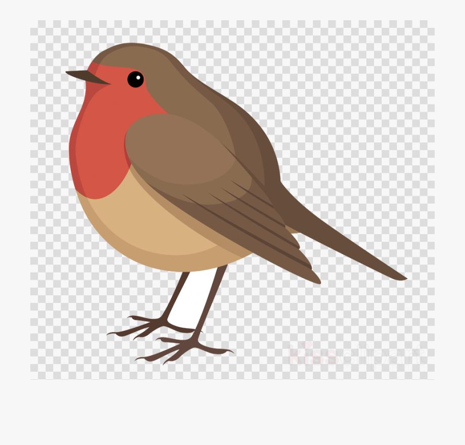 Download And Share Bird Clipart Robin Sharingan Png Cartoon Seach More Similar Free Transparent Cliparts Carttons And Silh Bird Clipart Cartoon Birds Bird