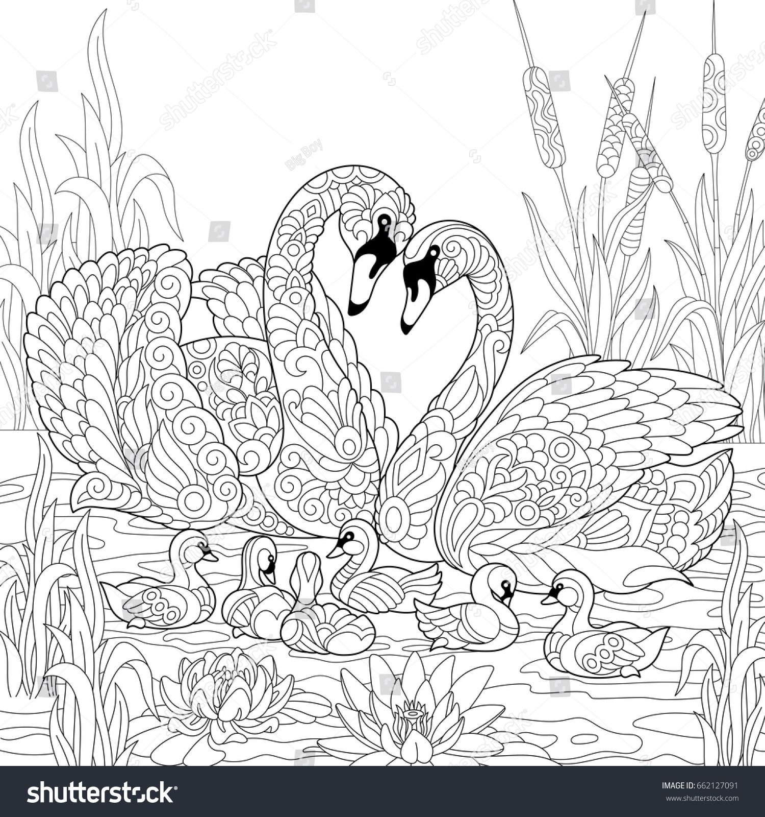 Coloring Book Page Of Swan Birds Family Lotus Flowers And Reed Grass Freehand Sketch Drawing For A Animal Coloring Pages Coloring Books Animal Coloring Books