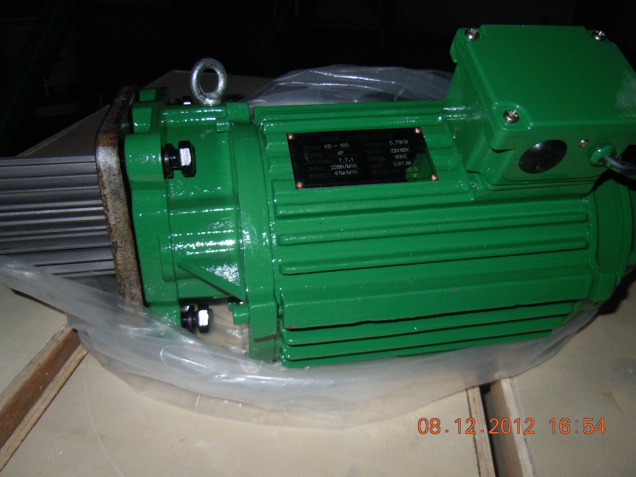 Motor thermal overloads protection of crane geared motors