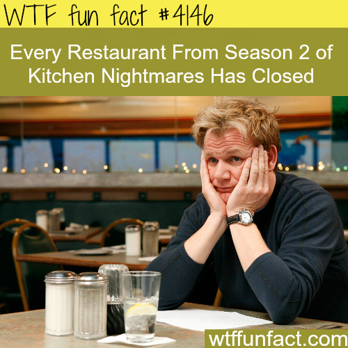 Gordon Ramsay Kitchen Nightmares Failures: What Happens To The Restaurants In Kitchen Nightmares