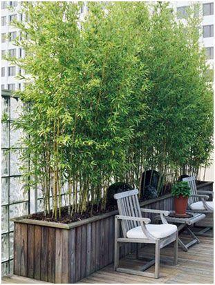 125 Container Garden Ideas and Tips For Garden Pots and Planter ...