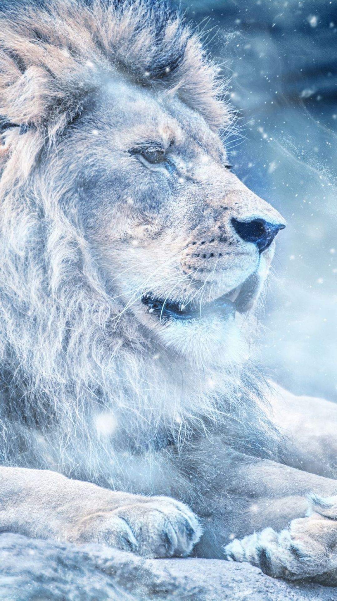 Lion Iphone Android Iphone Desktop Hd Backgrounds Wallpapers 1080p 4k 124959 Hdwallpapers Androidwallpapers Animal Wallpaper Beast Wallpaper Lion