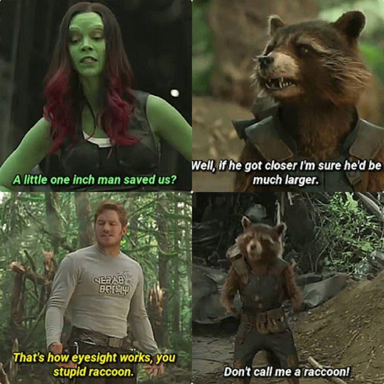 I M Sorry I Meant Trash Panda Marvel Jokes Funny Marvel Memes