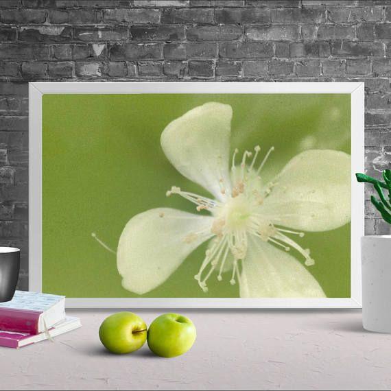 PRINTABLE art, White Flower Print, Floral wall art, Alternative ...