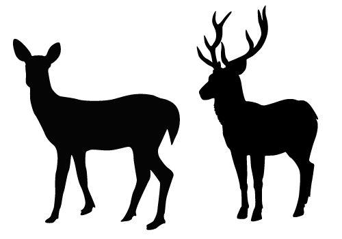 Deer Silhouette Vector Free Download Deer Vectors Deer Silhouette Silhouette Illustration Animals