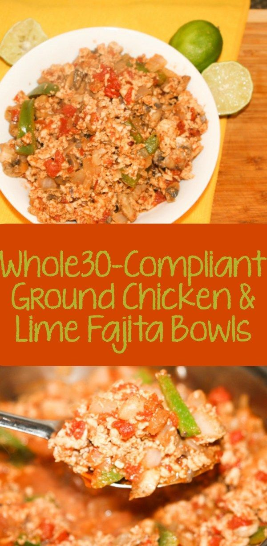 Quick easy ground chicken recipes