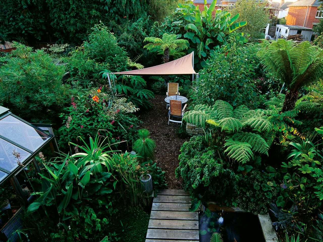 discover ideas for shade garden design from the experts at hgtv learn practical tips for