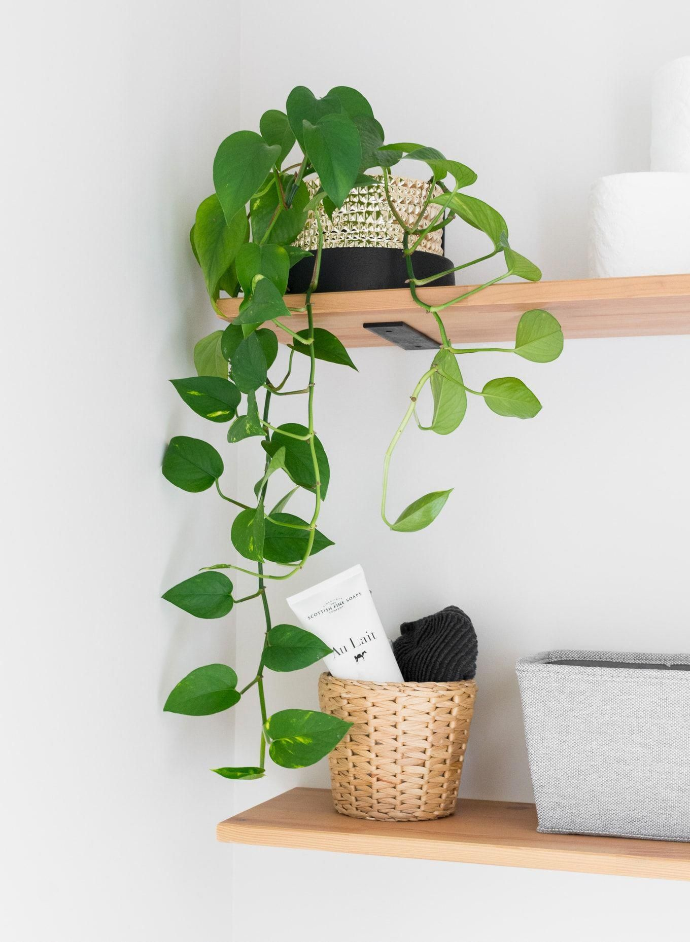 Tiny Powder Room Decorating Ideas: Modern Half Bath Updates for $100 #modernpowderrooms