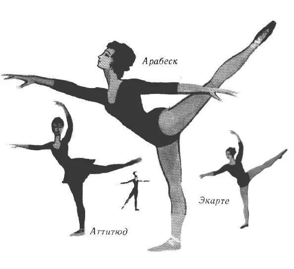 фигуры в балете названия: 14 тыс изображений найдено в ...