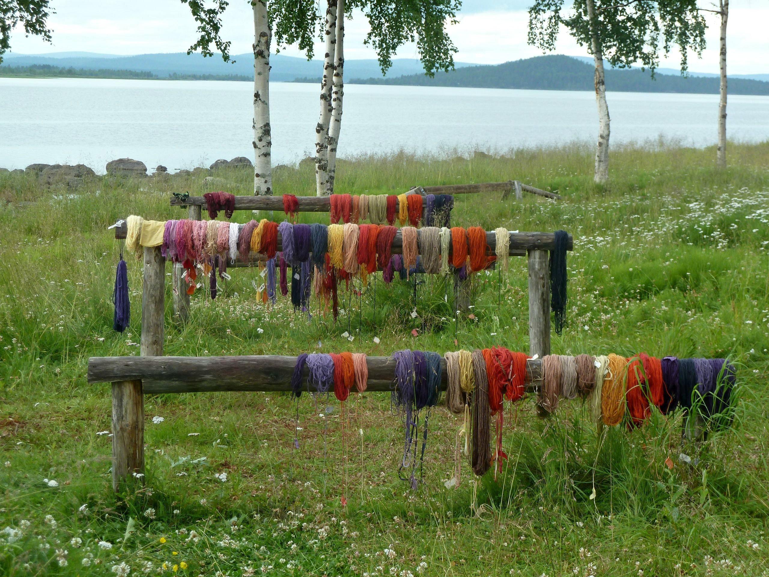 Värjäri värjäsi punaista, violettia, keltaista, oranssia... #jussakka  #punainen #violetti #lila #oranssi #keltainen #colors #natural #dyed www.facebook.com/pages/JUSSAKKA-Oda-K/173696896121402