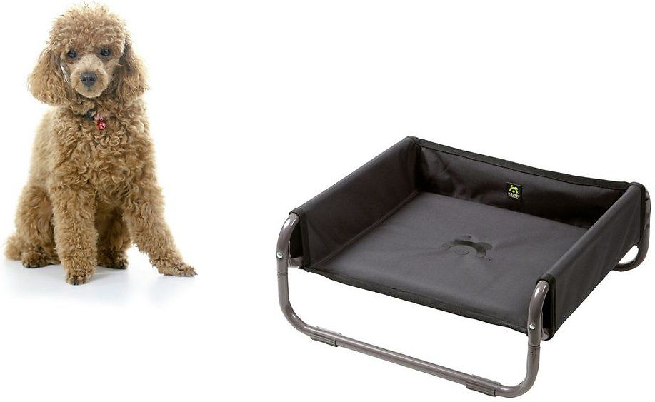 Maelson anthracite soft dog bed small soft dog beds