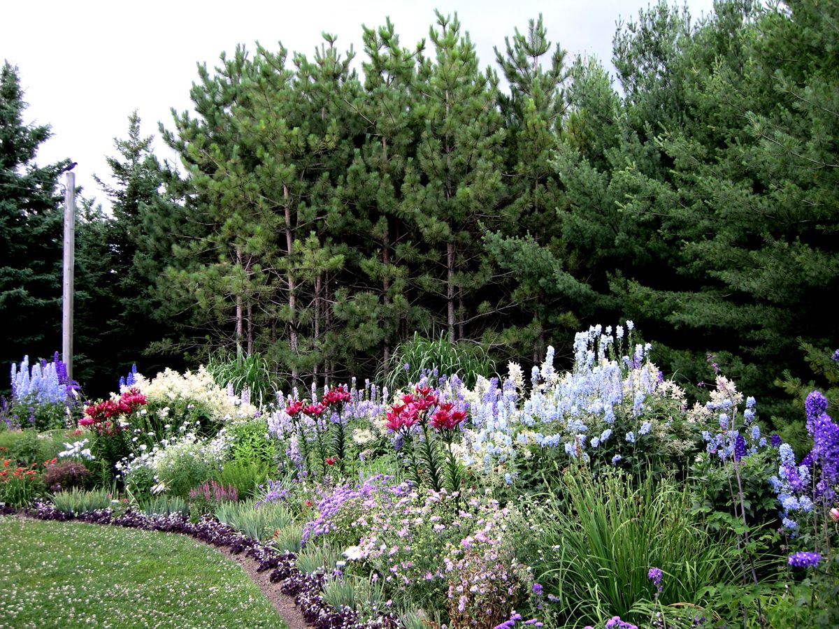 This Is A Very Large Perennial Border That Is Always