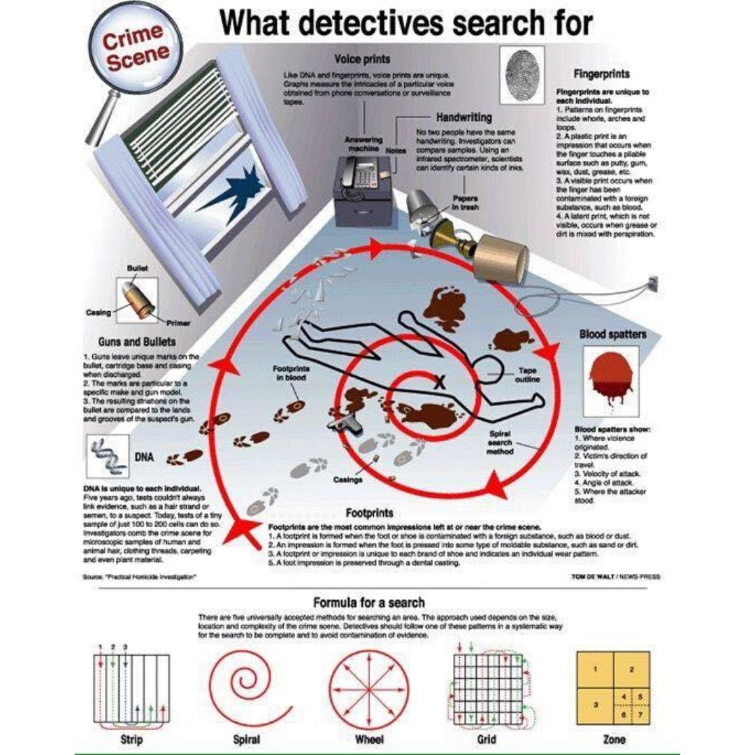 Home (With images) Forensic science, Forensic