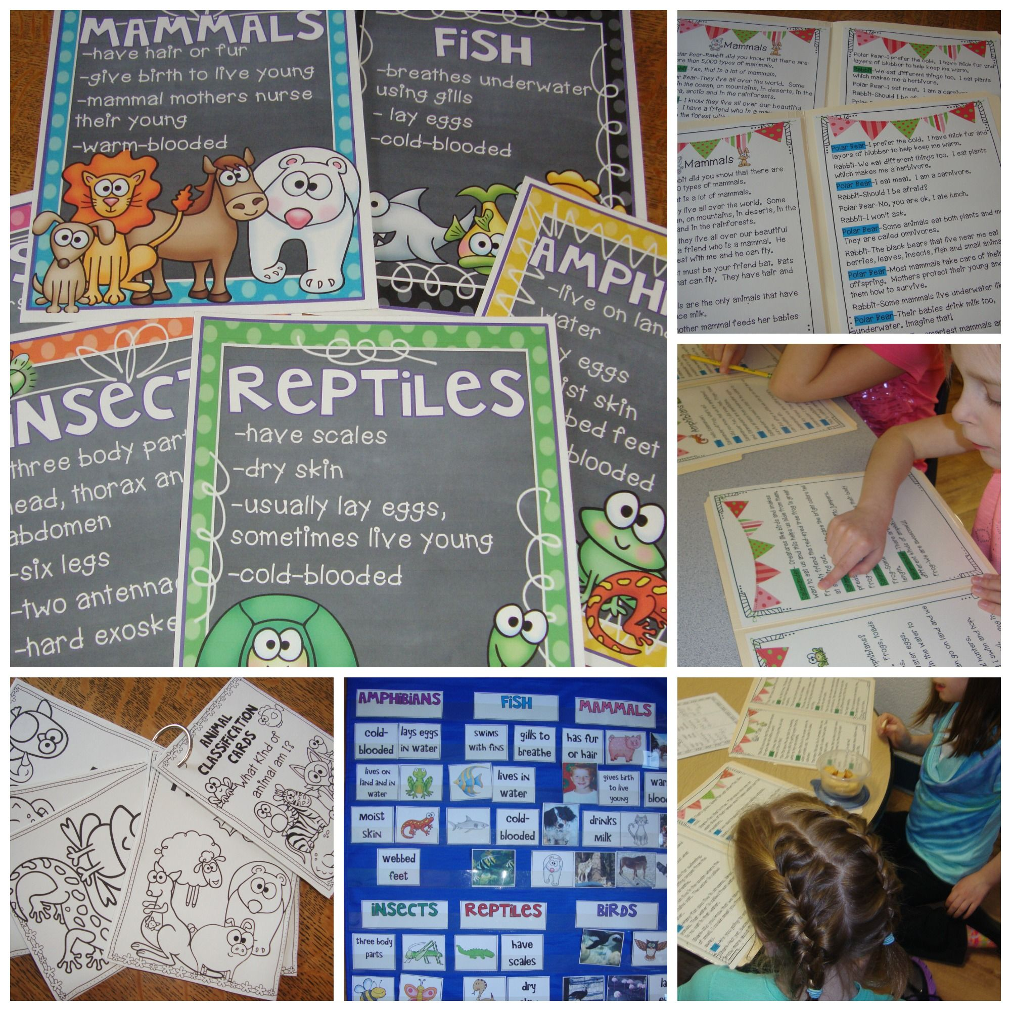 Animal Classification An Ela And Science Unit