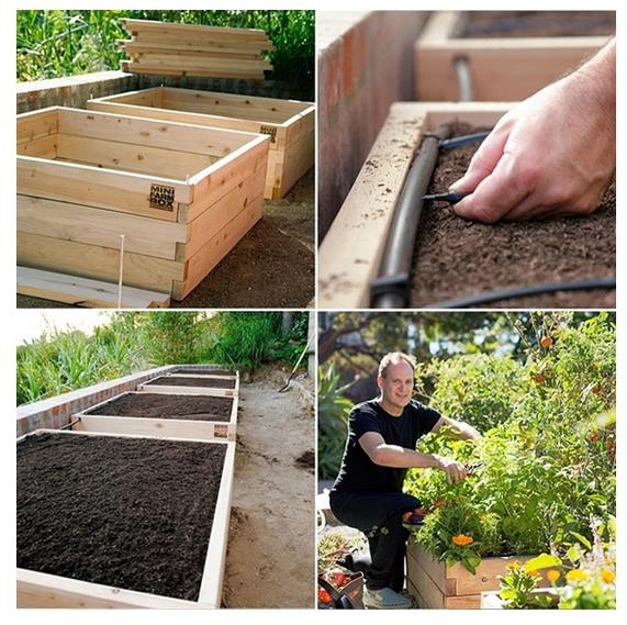 Syst me arrosage avec images jardin de l gumes - Arrosage automatique jardin potager ...