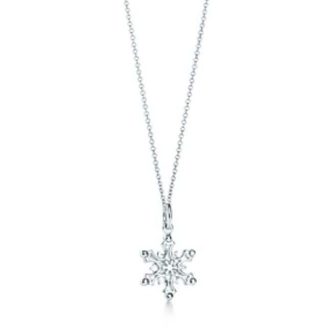 72accd165 Tiffany and co. Snowflake necklace | Sparkly | Jewelry, Fashion ...
