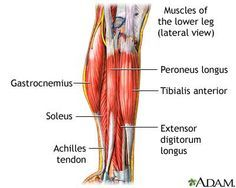 is your calf muscle pain just a strain or something else
