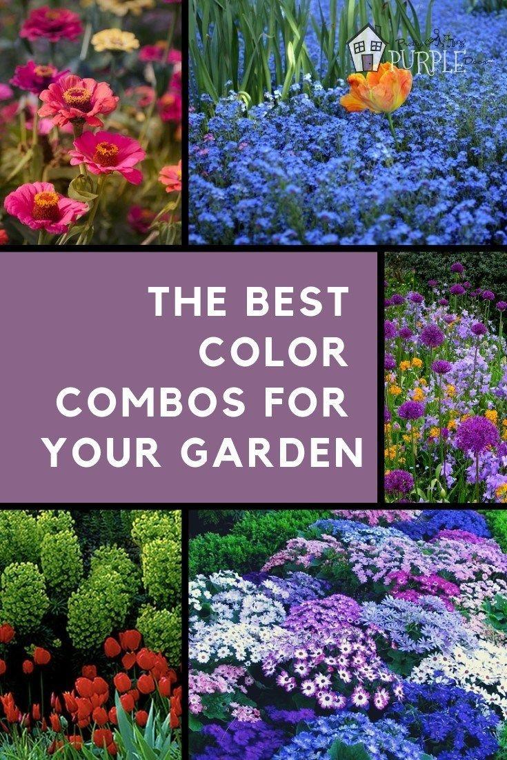 So erstellen Sie wunderschöne Garten-Farbschemata #landscapingtips