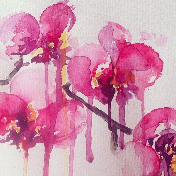 White Orchid Water Pink: Pink Orchid Water Color. I Just Love The Way This Looks