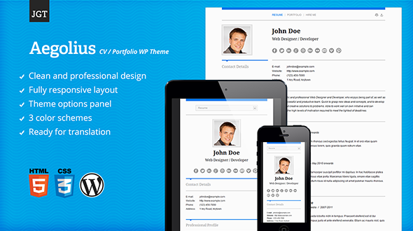 aegolius responsive cv resume portfolio wordpress theme - Wordpress Resume Theme