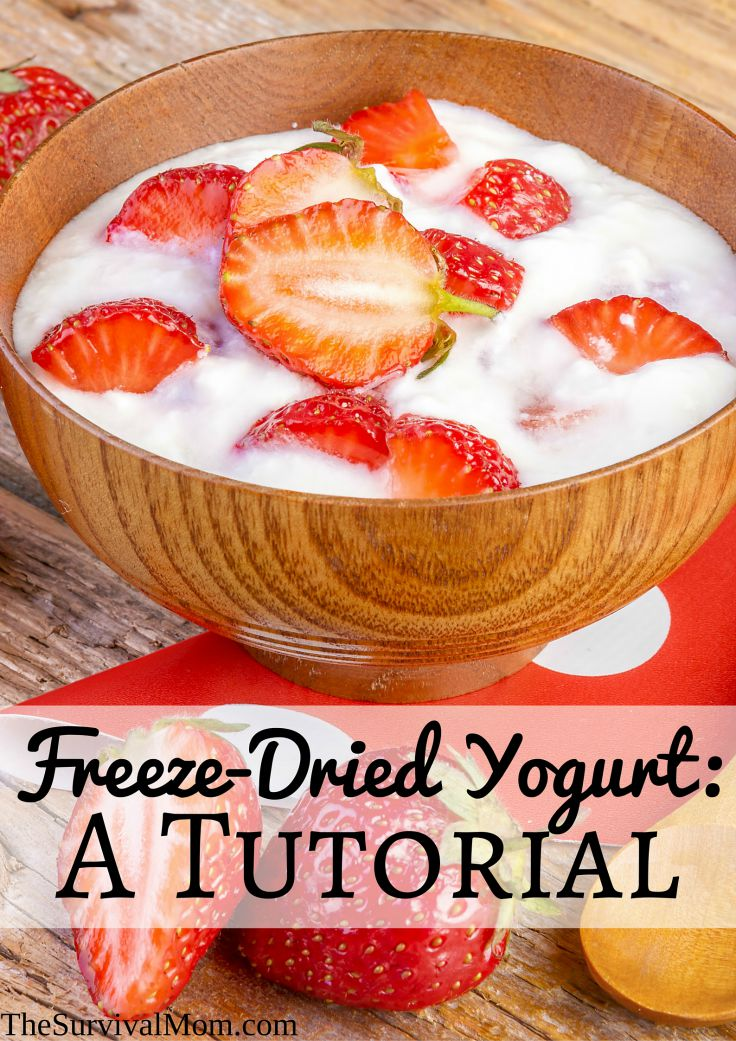 Freeze-Dried Yogurt: A Tutorial - Survival Mom