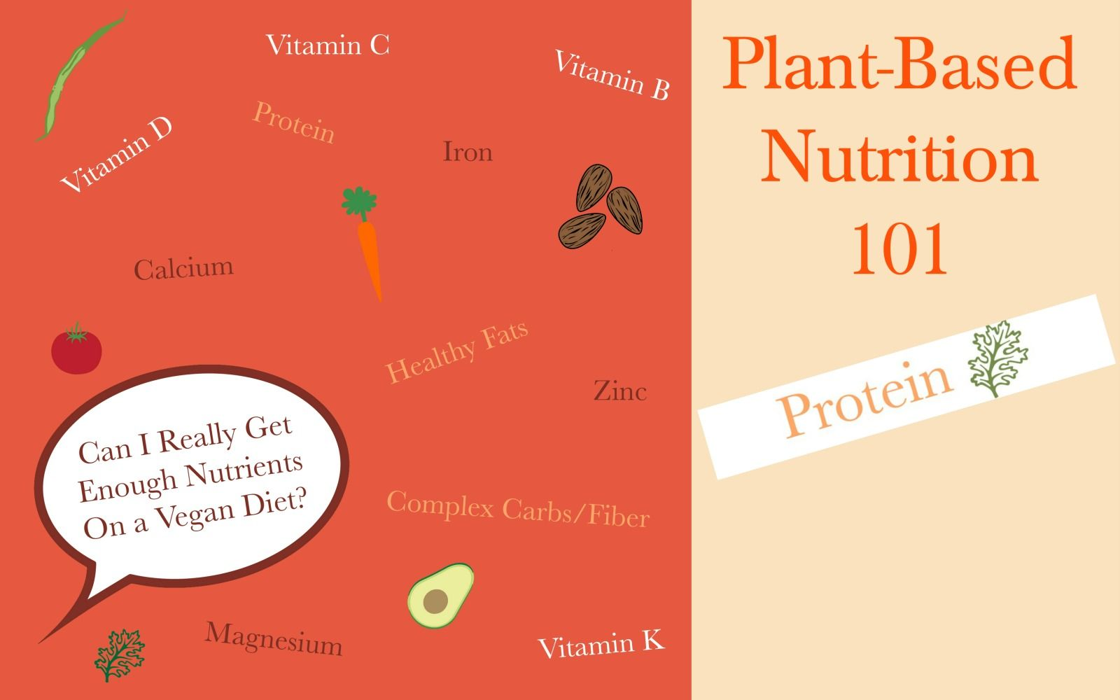 Plant Nutrition 101, A Green Monster's Guide to Plant-Based Nutrition: Plant-Based Protein