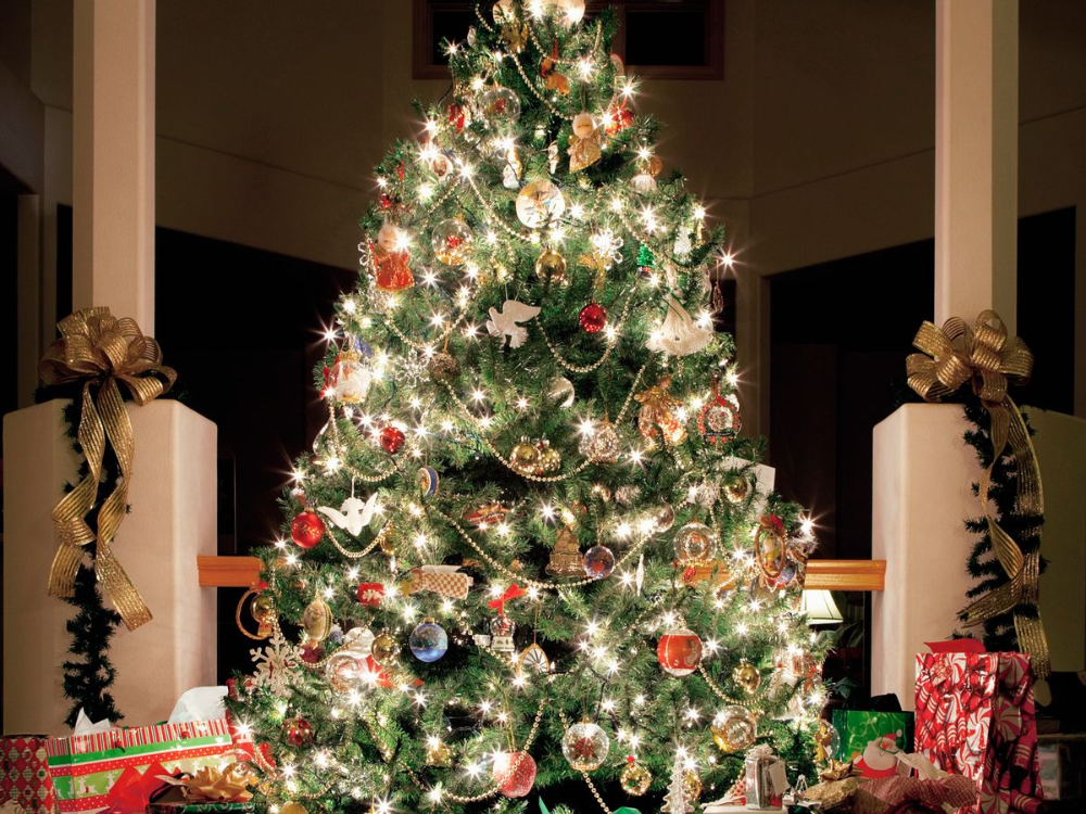 When You Should Put Your Christmas Tree Up And Places To Buy One Christmas Decorations Cheap Christmas Decorations Online Christmas Tree Decorations Uk
