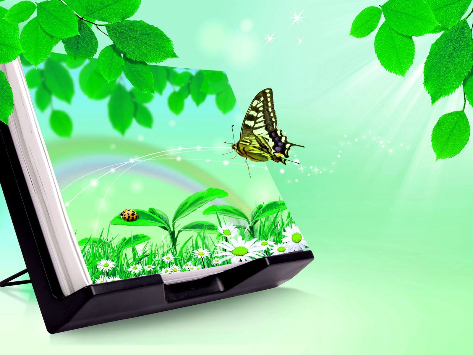 3D Wallpapers HD Nature 3d Butterfly Free Download For