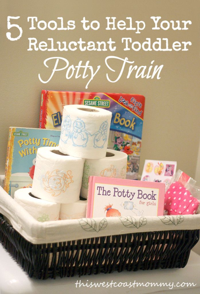 5 Tools to Help Your Reluctant Toddler Potty Train