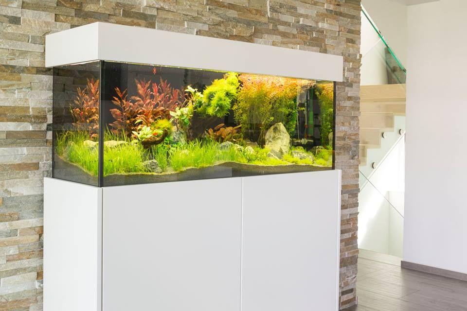 Aquarium wohnzimmer ~ Aquarium sideboard aquarium sideboard aquariums
