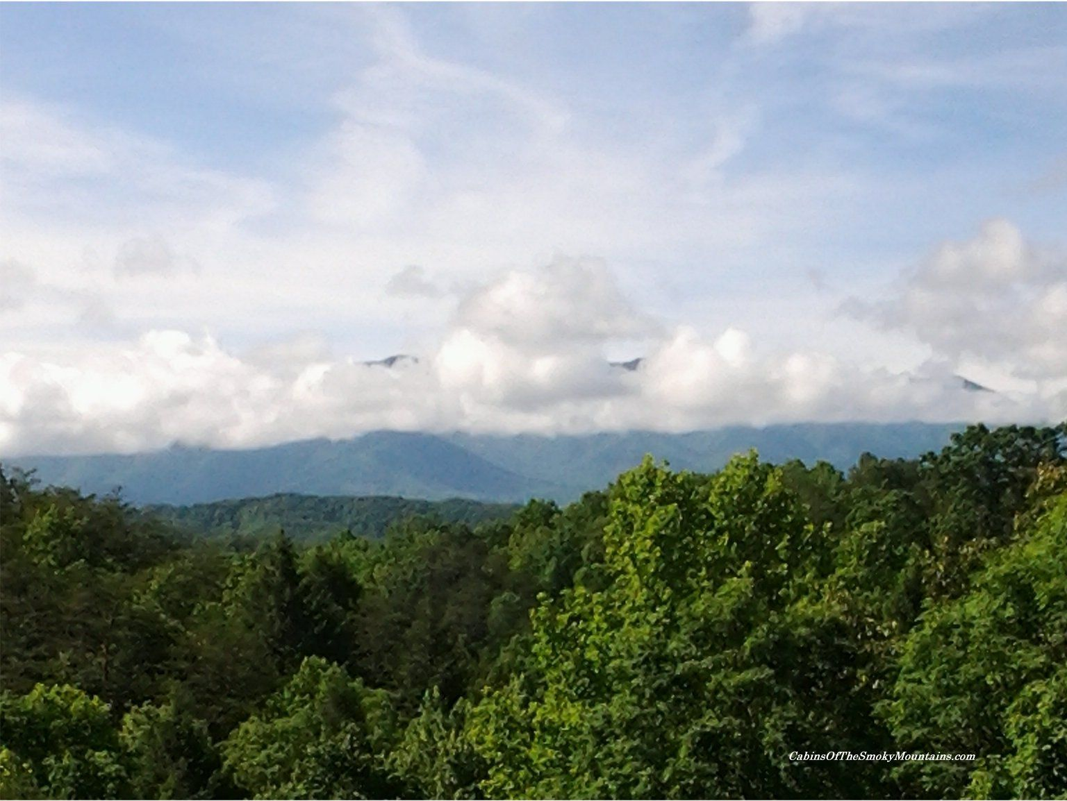 A May Day In The Smoky Mountains Nice View From A Cabin Called Knotty But Nice Close To Pigeon Forge Mountains Behind Th Smoky Mountains Mountains Nice View