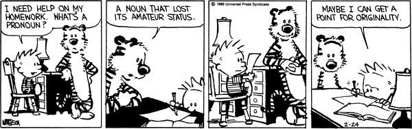 Calvin Hobbes What Is A Pronoun One Of Those Inspired Moments