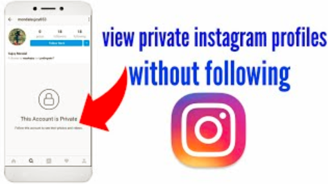 With PrivateIG or instagram private profile viewer tool you