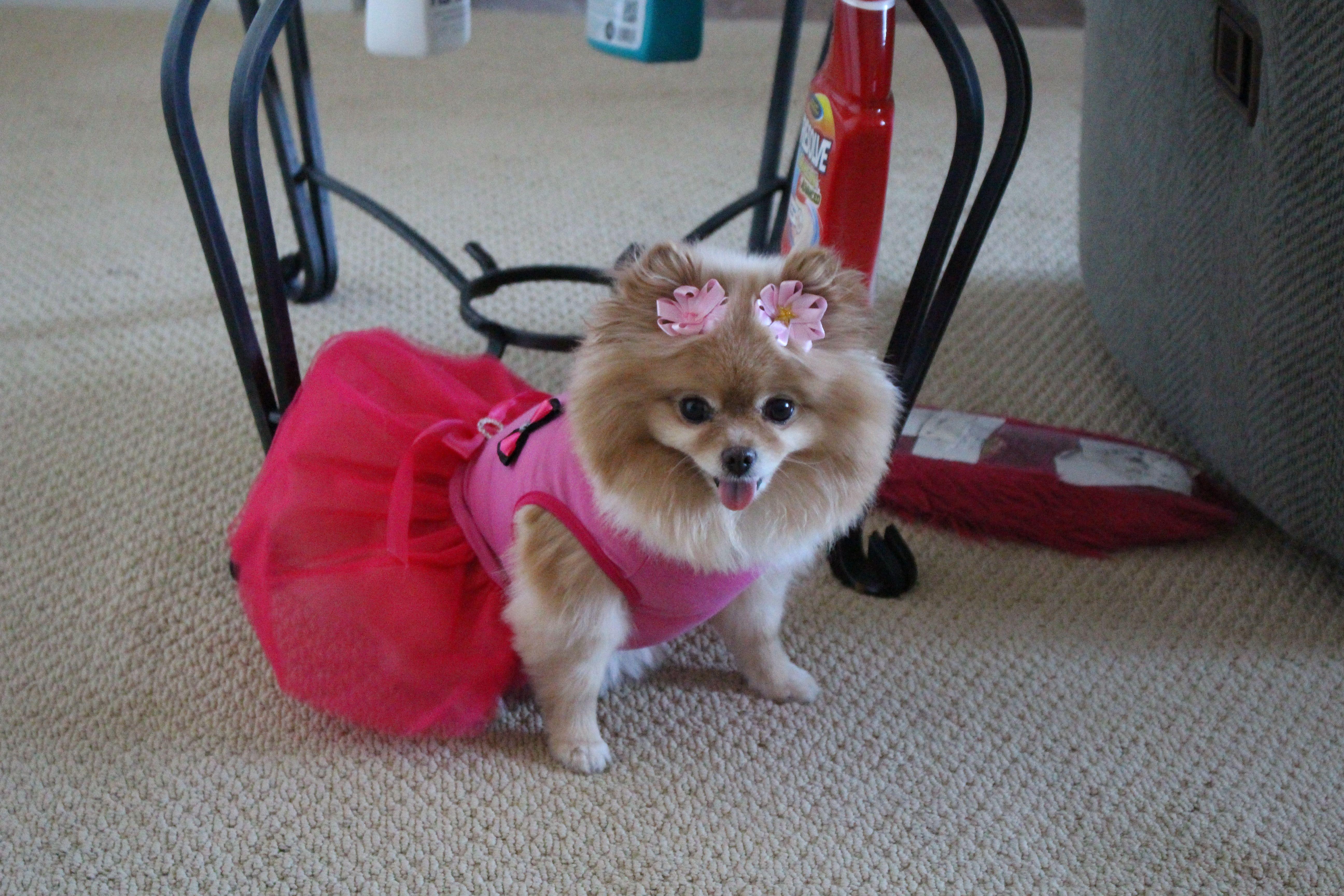 so pretty in her new dress