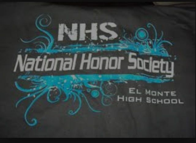 shirt ideas for national honor society national honor society  nhs four pillars essay checker national honors society essay national honors society s four pillars are essential elements to being a