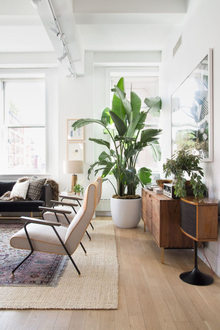 """Greenery surrounds <a href=""""http://www.anthropologie.com/anthro/product/home-furniture-chairs/35553544.jsp#/"""" target=""""_blank"""">two velvet Anthropologie armchairs</a>. Jon is a self-proclaimed lover of plants (makes sense for a guy who runs a salad joint). As he says, """"Plants really bring the place to life."""" We couldn't agree more."""