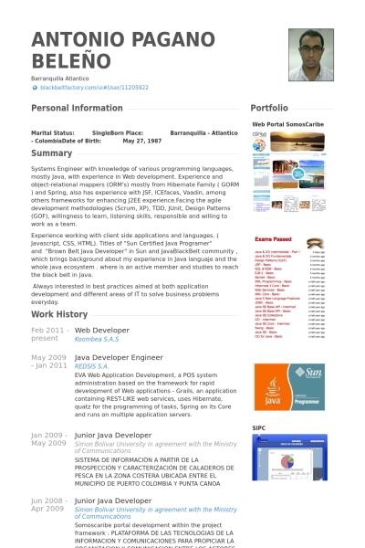 Image Result For Jr Web Developer Resume Web Developer Resume Sample Resume Resume