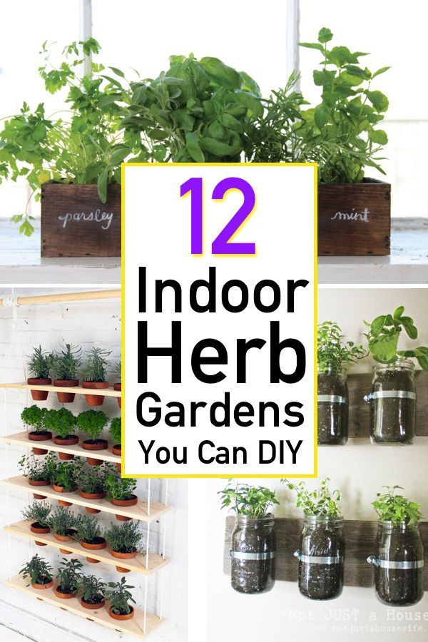 12 Awesome Indoor Herb Garden Ideas   The Unlikely Hostess