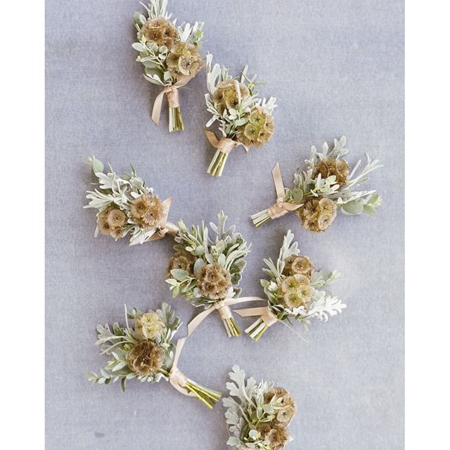 """These textured boutonnieres by @kelly_perry are about as masculine as they can get. Composed of scabiosa pods, eucalyptus, and dusty miller. Photo by @almondleaf. #weddingflowers #boutonniere #weddingideas"" Photo taken by @oncewed on Instagram, pinned via the InstaPin iOS App! http://www.instapinapp.com (04/26/2016)"