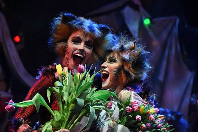 Cats – Musical Vibes