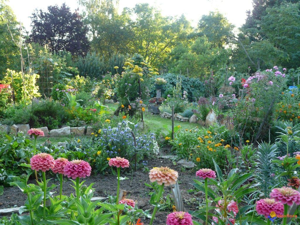 Potager, Petit jardin, Jardin potager