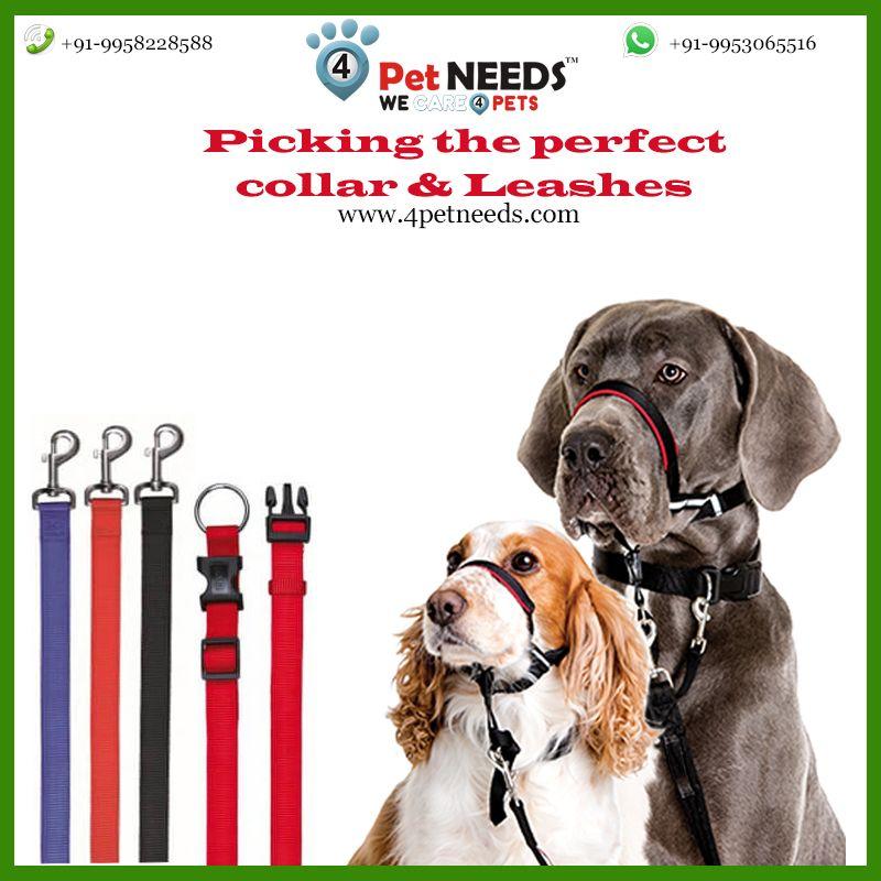 Pin By 4petneeds On 4petneeds Dog Leash Set Blue Online Dog Leash Collar And Leash Collar Perfect