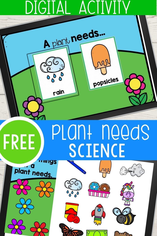 Kindergarten What Plants Need To Grow Digital Activity For Google Slides And Seesaw With An Option To Up In 2021 Fun Science Digital Activities Kindergarten Activities [ 1500 x 1000 Pixel ]