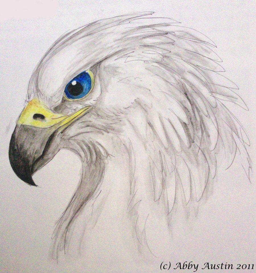 Pin By Jolanda Van Arnhem On Totem Eagle Art Totem