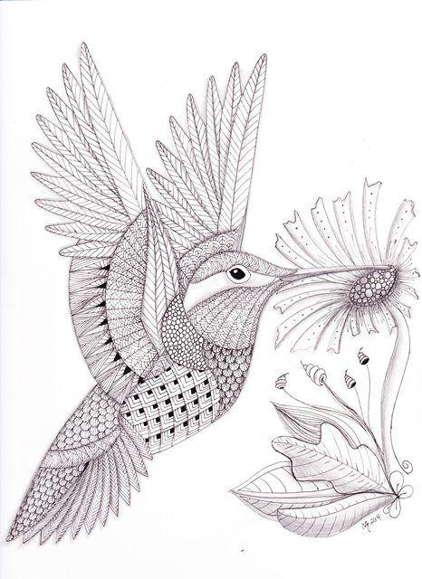 Tangled Hummingbird web | colibries | Pinterest | Colibri, Dibujos y ...