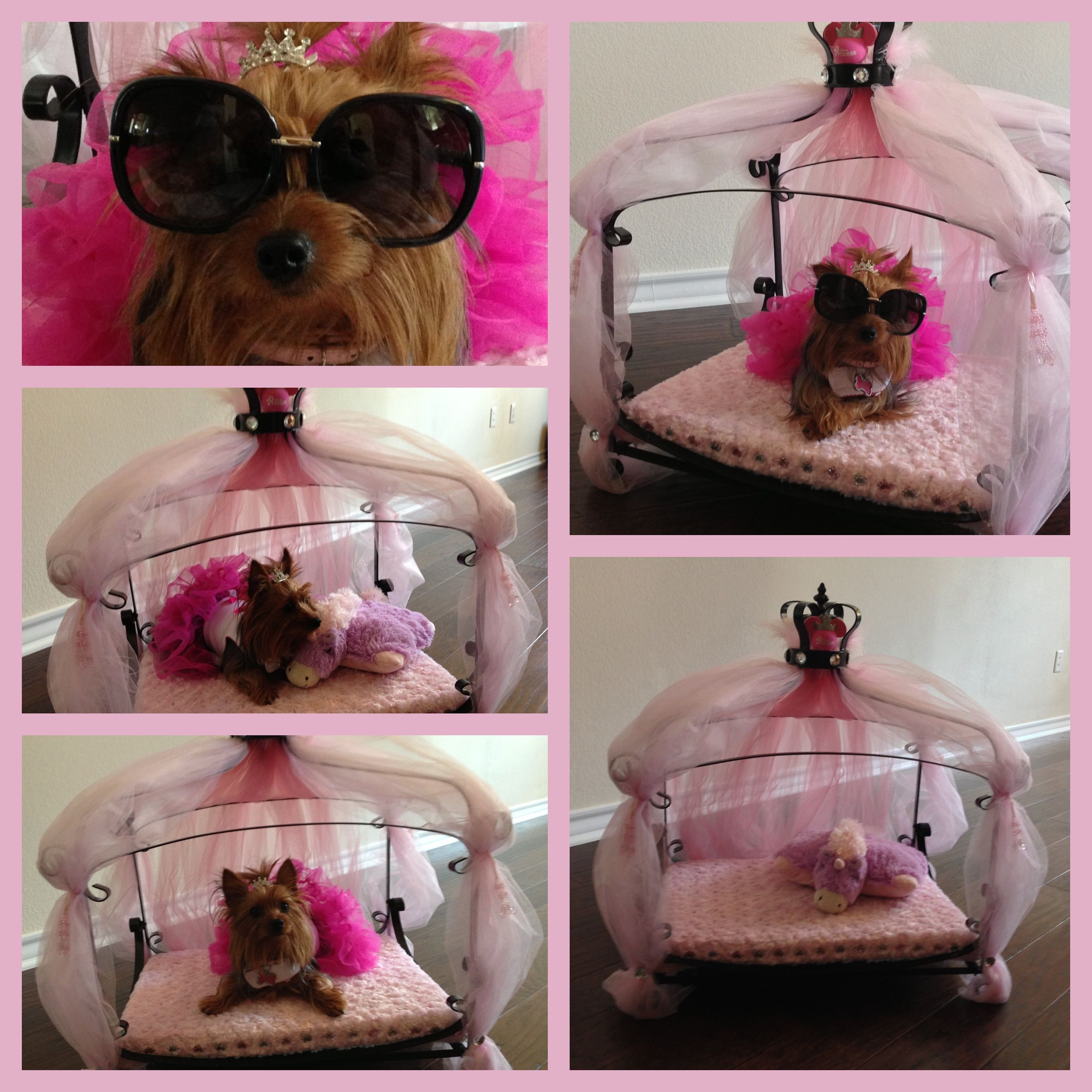 Yorkie Princess Bed Got The Bed At Amazon Went To Hobby Lobby For