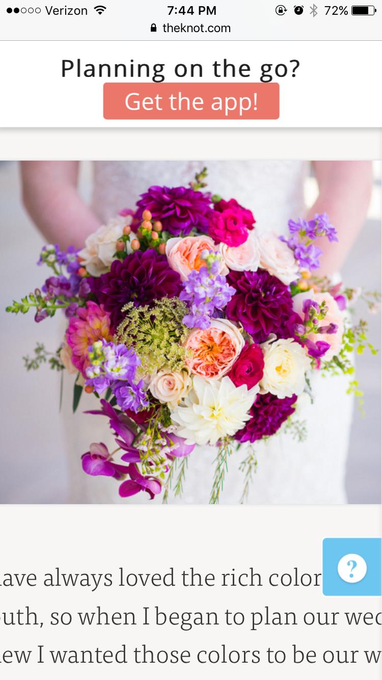 Pin by sienna floutsakos on flowers pinterest flowers