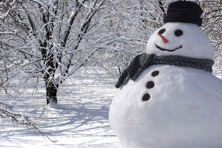 Build a snowman with my family